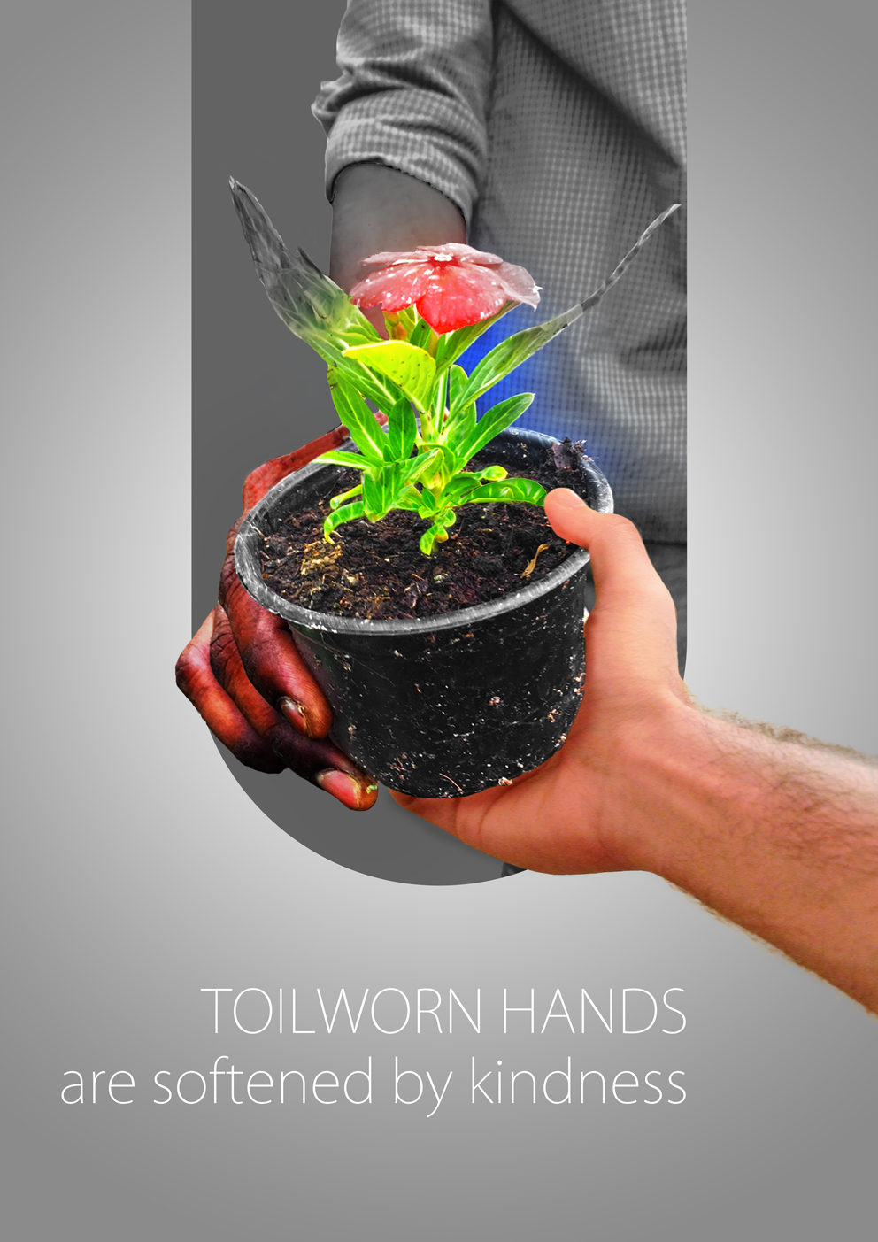 Toil-worn Hands